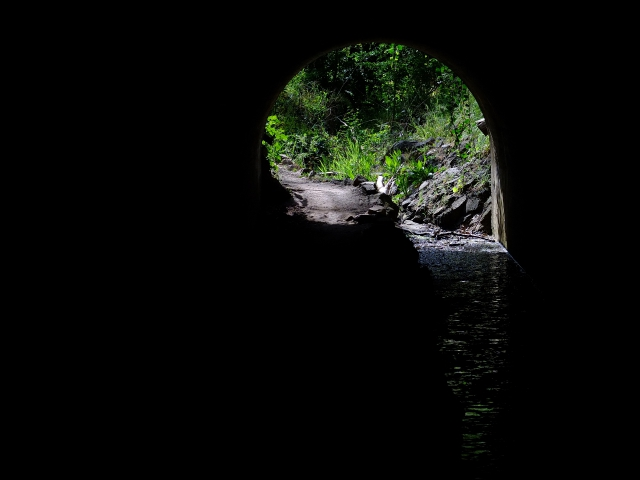 Echo tunnel