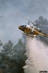 """7 0007 -- Durant els anys 2004 i 2005 es van produir alguns incendis a Castellbisbal, sortosament no tan grans com els del 1994.  <a href=""""http://www.malpolon.net/reportatge-incendis-a-castellbisbal-2004-2005/"""">Podeu llegir l'entrada sobre aquestes fotografies al blog aquí.</a>"""