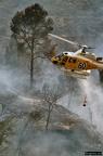 """8 0008 -- Durant els anys 2004 i 2005 es van produir alguns incendis a Castellbisbal, sortosament no tan grans com els del 1994.  <a href=""""http://www.malpolon.net/reportatge-incendis-a-castellbisbal-2004-2005/"""">Podeu llegir l'entrada sobre aquestes fotografies al blog aquí.</a>"""