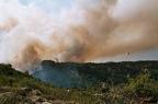"""19 0019 -- Durant els anys 2004 i 2005 es van produir alguns incendis a Castellbisbal, sortosament no tan grans com els del 1994.  <a href=""""http://www.malpolon.net/reportatge-incendis-a-castellbisbal-2004-2005/"""">Podeu llegir l'entrada sobre aquestes fotografies al blog aquí.</a>"""
