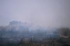 """aaa006 -- Durant els anys 2004 i 2005 es van produir alguns incendis a Castellbisbal, sortosament no tan grans com els del 1994.  <a href=""""http://www.malpolon.net/reportatge-incendis-a-castellbisbal-2004-2005/"""">Podeu llegir l'entrada sobre aquestes fotografies al blog aquí.</a>"""