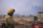 """aaa010 -- Durant els anys 2004 i 2005 es van produir alguns incendis a Castellbisbal, sortosament no tan grans com els del 1994.  <a href=""""http://www.malpolon.net/reportatge-incendis-a-castellbisbal-2004-2005/"""">Podeu llegir l'entrada sobre aquestes fotografies al blog aquí.</a>"""