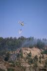 """aaa012 -- Durant els anys 2004 i 2005 es van produir alguns incendis a Castellbisbal, sortosament no tan grans com els del 1994.  <a href=""""http://www.malpolon.net/reportatge-incendis-a-castellbisbal-2004-2005/"""">Podeu llegir l'entrada sobre aquestes fotografies al blog aquí.</a>"""