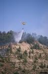 """aaa013 -- Durant els anys 2004 i 2005 es van produir alguns incendis a Castellbisbal, sortosament no tan grans com els del 1994.  <a href=""""http://www.malpolon.net/reportatge-incendis-a-castellbisbal-2004-2005/"""">Podeu llegir l'entrada sobre aquestes fotografies al blog aquí.</a>"""