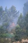 """aaa016 -- Durant els anys 2004 i 2005 es van produir alguns incendis a Castellbisbal, sortosament no tan grans com els del 1994.  <a href=""""http://www.malpolon.net/reportatge-incendis-a-castellbisbal-2004-2005/"""">Podeu llegir l'entrada sobre aquestes fotografies al blog aquí.</a>"""