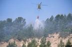 """aaa017 -- Durant els anys 2004 i 2005 es van produir alguns incendis a Castellbisbal, sortosament no tan grans com els del 1994.  <a href=""""http://www.malpolon.net/reportatge-incendis-a-castellbisbal-2004-2005/"""">Podeu llegir l'entrada sobre aquestes fotografies al blog aquí.</a>"""