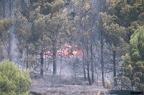 """aaa019 -- Durant els anys 2004 i 2005 es van produir alguns incendis a Castellbisbal, sortosament no tan grans com els del 1994.  <a href=""""http://www.malpolon.net/reportatge-incendis-a-castellbisbal-2004-2005/"""">Podeu llegir l'entrada sobre aquestes fotografies al blog aquí.</a>"""