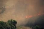 """dia 0201 -- Durant els anys 2004 i 2005 es van produir alguns incendis a Castellbisbal, sortosament no tan grans com els del 1994.  <a href=""""http://www.malpolon.net/reportatge-incendis-a-castellbisbal-2004-2005/"""">Podeu llegir l'entrada sobre aquestes fotografies al blog aquí.</a>"""