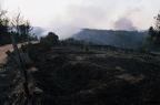"""dia 0345 -- Durant els anys 2004 i 2005 es van produir alguns incendis a Castellbisbal, sortosament no tan grans com els del 1994.  <a href=""""http://www.malpolon.net/reportatge-incendis-a-castellbisbal-2004-2005/"""">Podeu llegir l'entrada sobre aquestes fotografies al blog aquí.</a>"""