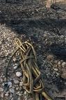 """dia 0362 -- Durant els anys 2004 i 2005 es van produir alguns incendis a Castellbisbal, sortosament no tan grans com els del 1994.  <a href=""""http://www.malpolon.net/reportatge-incendis-a-castellbisbal-2004-2005/"""">Podeu llegir l'entrada sobre aquestes fotografies al blog aquí.</a>"""