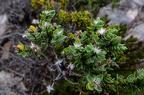 Kangaroo Island Landscapes18